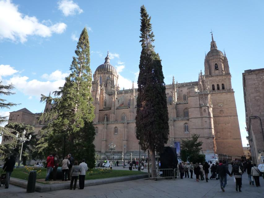La nouvelle cathédrale (gothique)