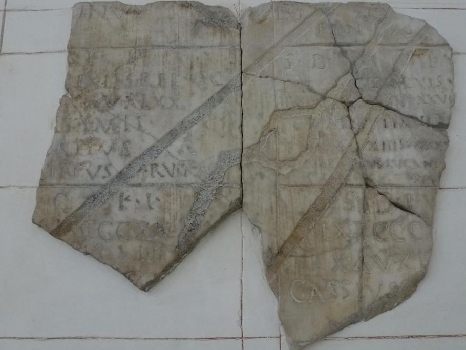Un fragment du cadastre A avec un îlot sur le Rhône en son centre (localisation non déterminée)