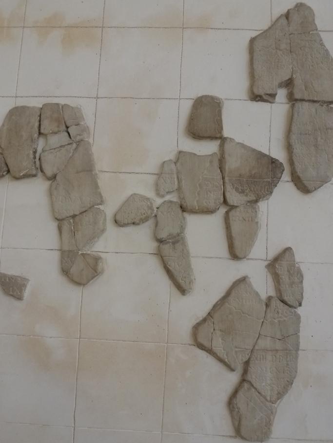 Un fragment du cadastre C représentant un ensemble d'îles (région en bordure du Rhône)