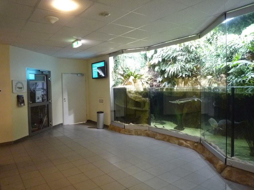 L'agencement intérieur de l'ancienne tour de DCA a laissé place aux aquariums et aux labos.