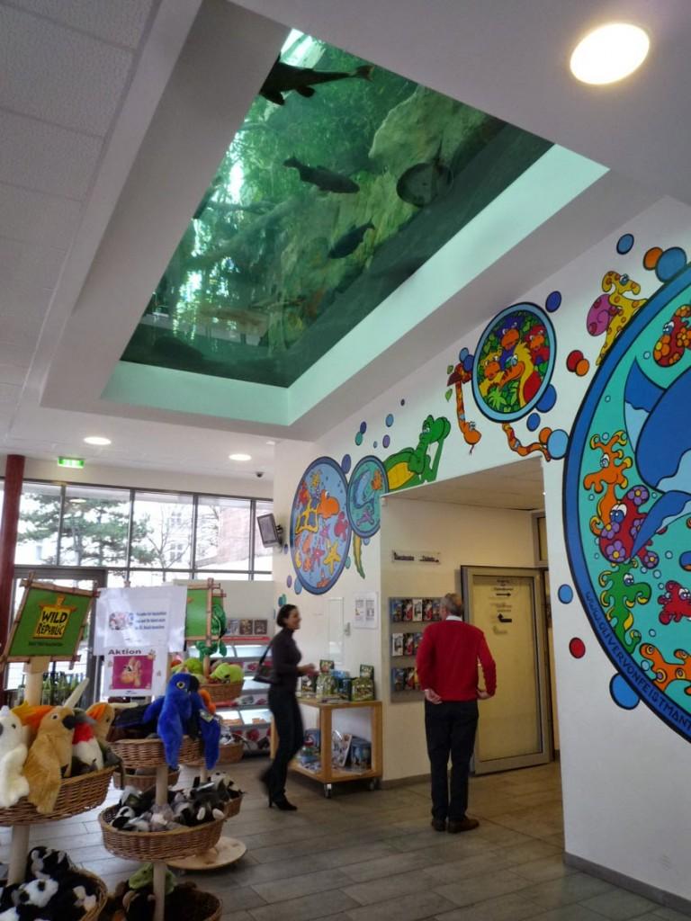 La boutique est située sous l'aquarium du parc des crocodiles.